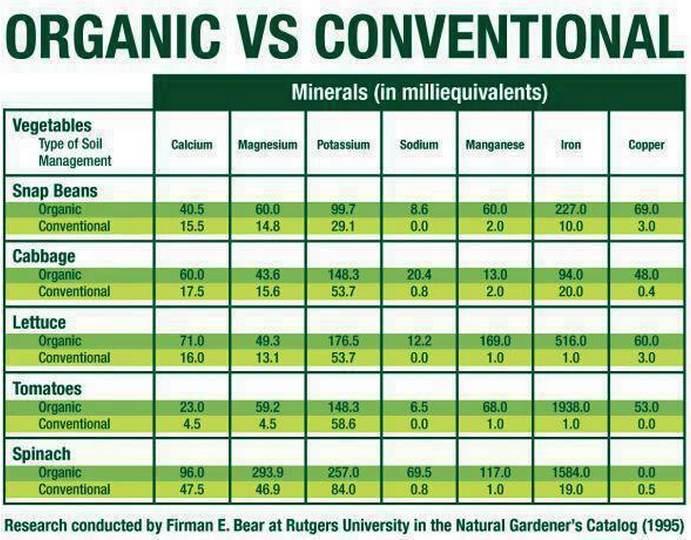 organic-vs-nonorganic-algaecal-plant-calcium-d3