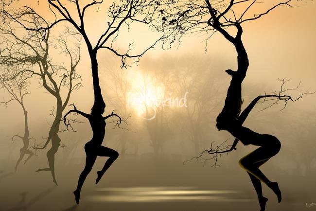 Dancing-Trees_art